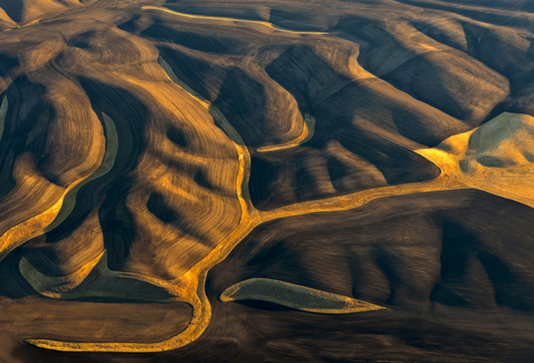 Patterns of the Palouse 2